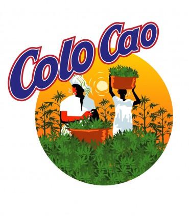 Camiseta Colo-Cao