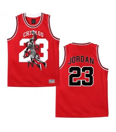 Camiseta Baloncesto JORDAN 23