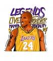 Camiseta Idolo Basketball