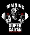 Camiseta Training Super Anime
